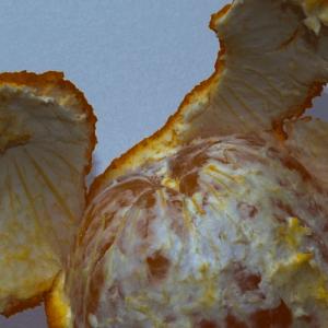 Citrus - Orange Peel